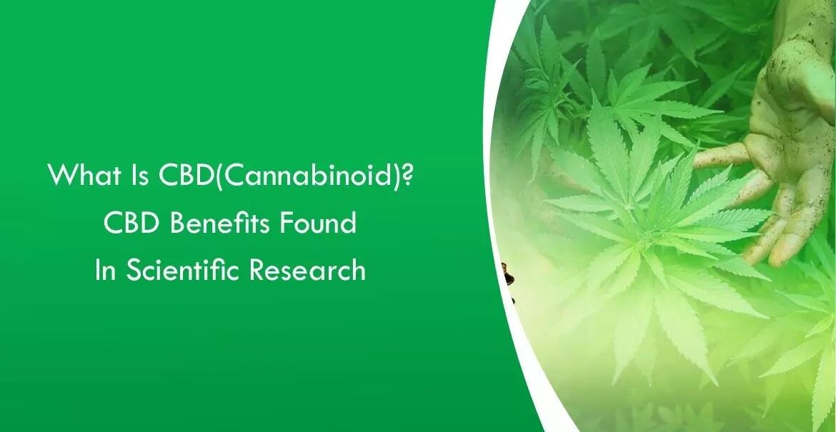Oncologists Believe That CBD Benefits Cancer Patients