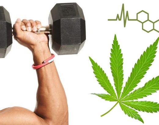 fitness-and-cbd-oil